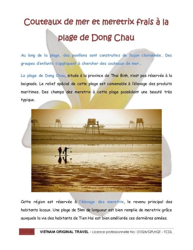 1 VIETNAM ORIGINAL TRAVEL – Licence professionnelle No : 01024/GPLHQT – TCDL Couteaux de mer et meretrix frais à la plage ...