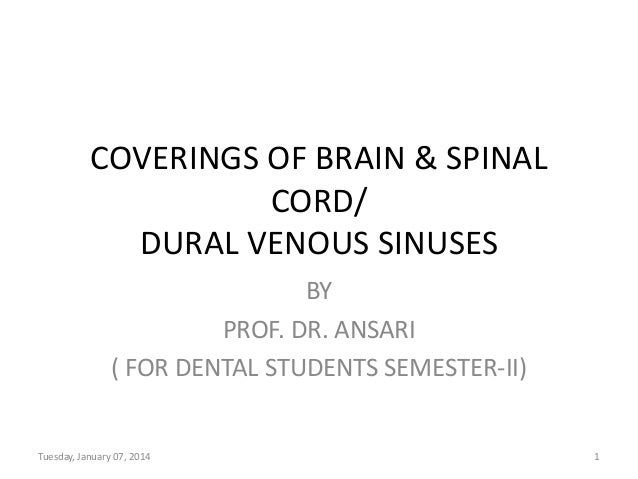 COVERINGS OF BRAIN & SPINAL CORD/ DURAL VENOUS SINUSES BY PROF. DR. ANSARI ( FOR DENTAL STUDENTS SEMESTER-II)  Tuesday, Ja...