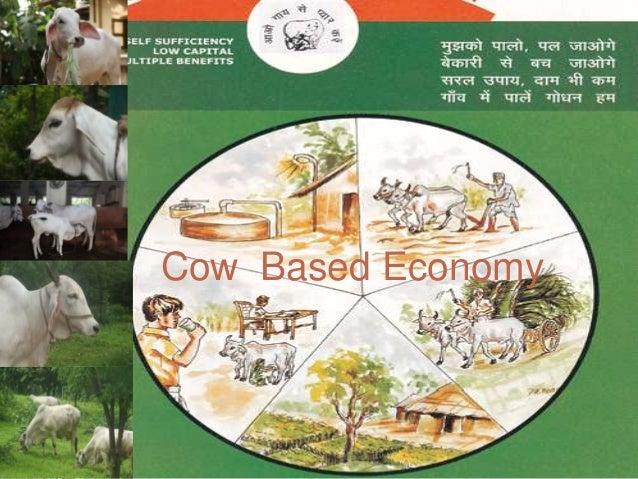 Cow Based Economy