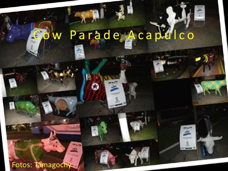 CowParade Acapulco<br />Fotos: Tamagochy<br />