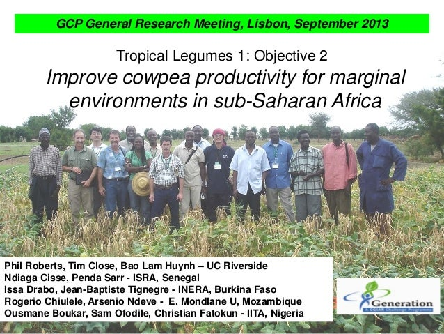 Tropical Legumes 1: Objective 2 Improve cowpea productivity for marginal environments in sub-Saharan Africa Phil Roberts, ...