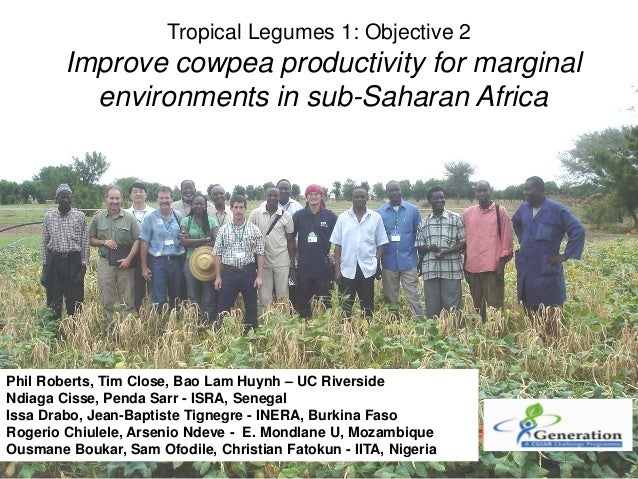 TLM III: Improve cowpea productivity for marginal  environments in sub-Saharan Africa – O Boukar