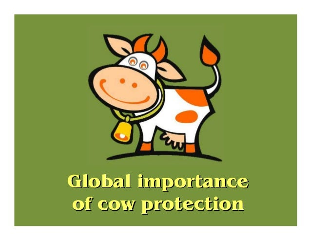 Global importanceGlobal importance of cow protectionof cow protection