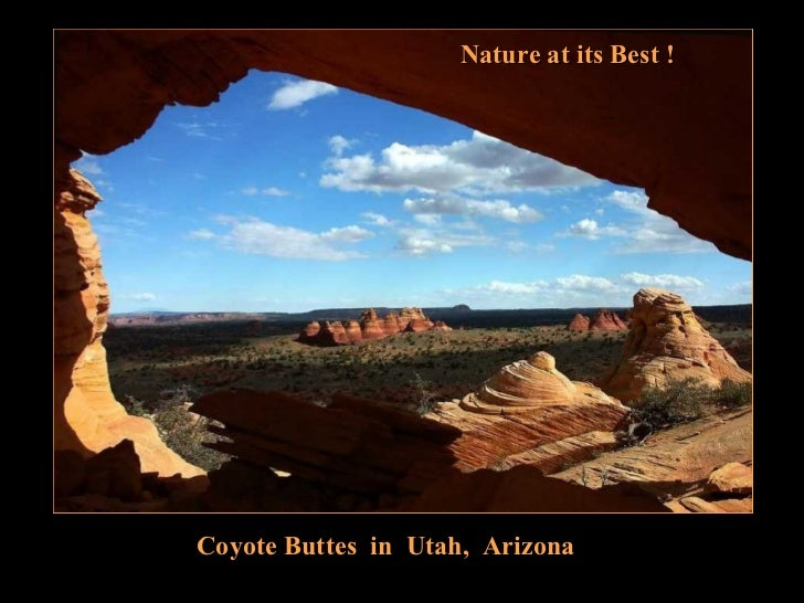 Coyote buttes in_utah_arizona_