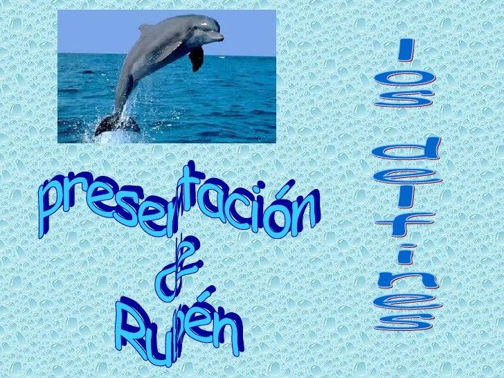 presentación de Rubén los delfines