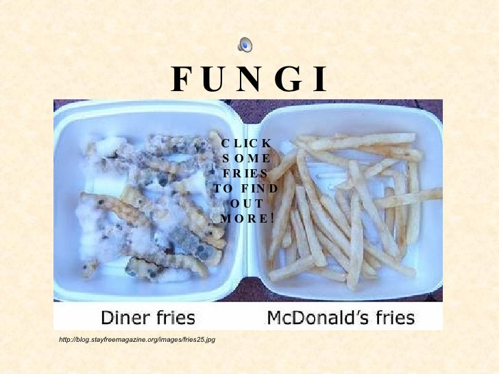 FUNGI http://blog.stayfreemagazine.org/images/fries25.jpg CLICK SOME FRIES TO FIND OUT MORE!