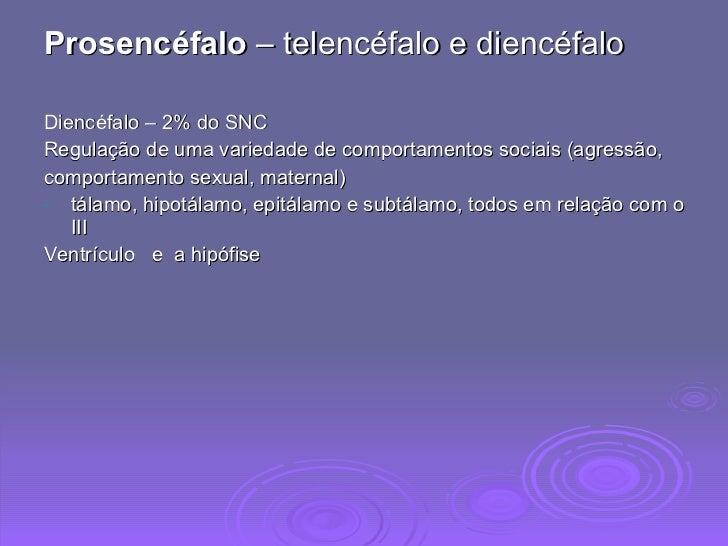 <ul><li>Prosencéfalo  – telencéfalo e diencéfalo </li></ul><ul><li>Diencéfalo – 2% do SNC </li></ul><ul><li>Regulação de u...