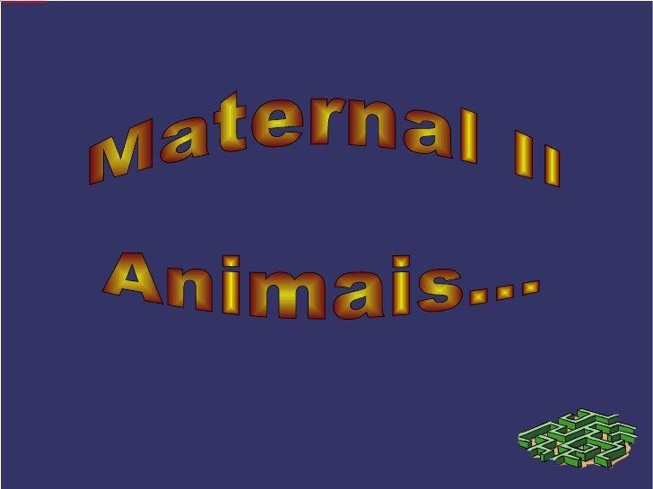 Maternal II Animais...