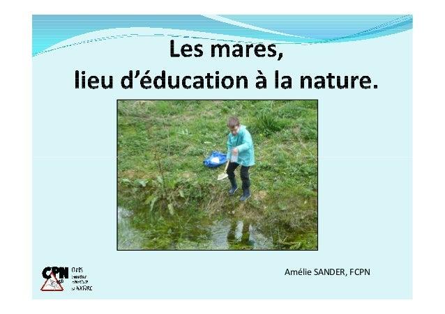 Amélie SANDER, FCPN