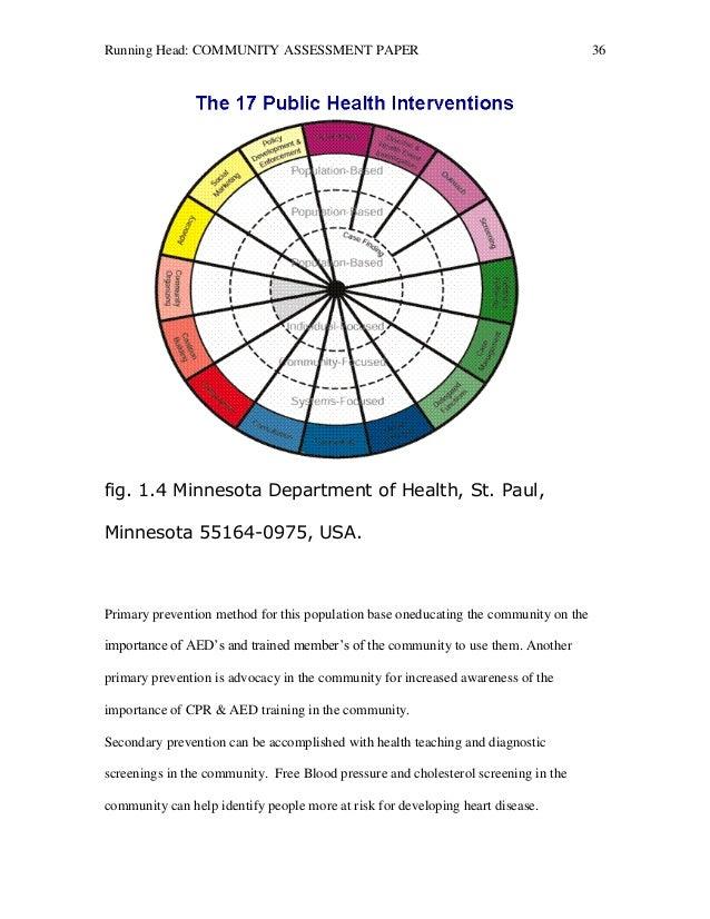 Community assessment essay paper