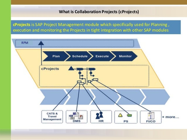 Sap Cprojects