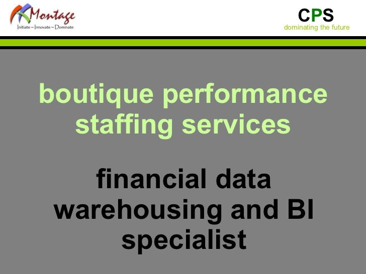 boutique performance staffing services financial data warehousing and BI specialist