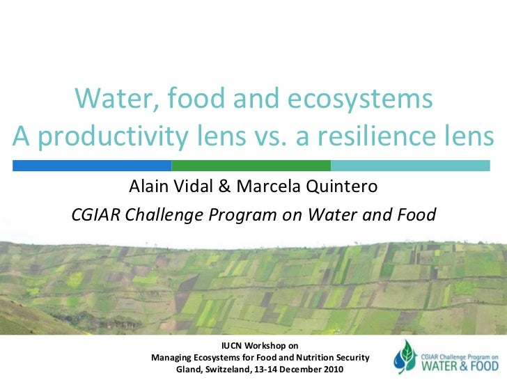 Water, food and ecosystemsA productivity lens vs. a resilience lens<br />Alain Vidal & Marcela Quintero<br />CGIAR Challen...