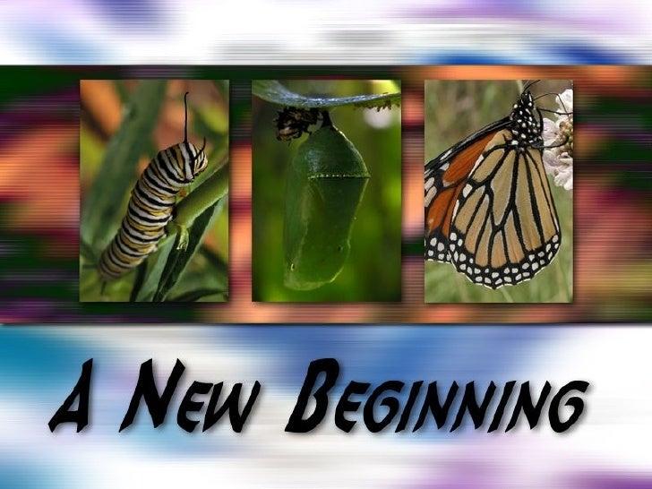 New Beginning 7: Maintain Momentum