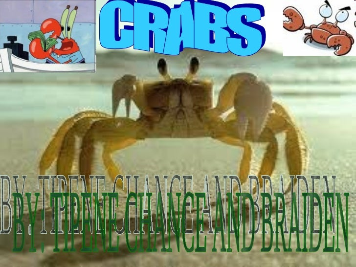 CRABS BY: TIPENE CHANCE AND BRAIDEN