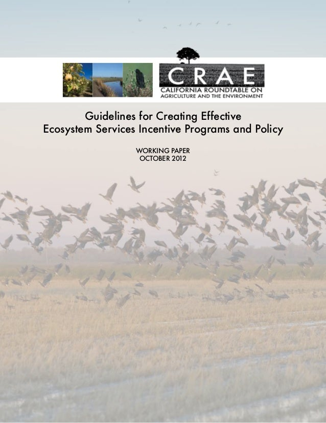 Guidelines for Creating Effective Ecosystem Services Incentive Programs and Policy Working Paper October 2012
