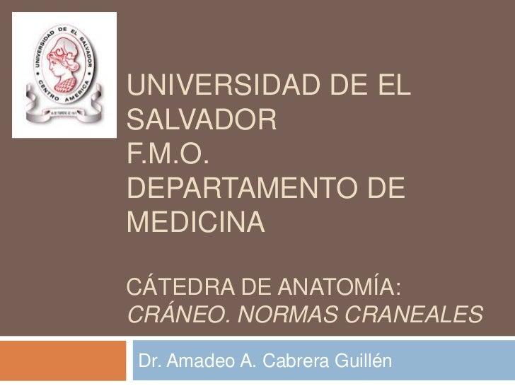 UNIVERSIDAD DE ELSALVADORF.M.O.DEPARTAMENTO DEMEDICINACÁTEDRA DE ANATOMÍA:CRÁNEO. NORMAS CRANEALESDr. Amadeo A. Cabrera Gu...