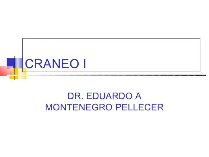 CRANEO I     DR. EDUARDO A  MONTENEGRO PELLECER