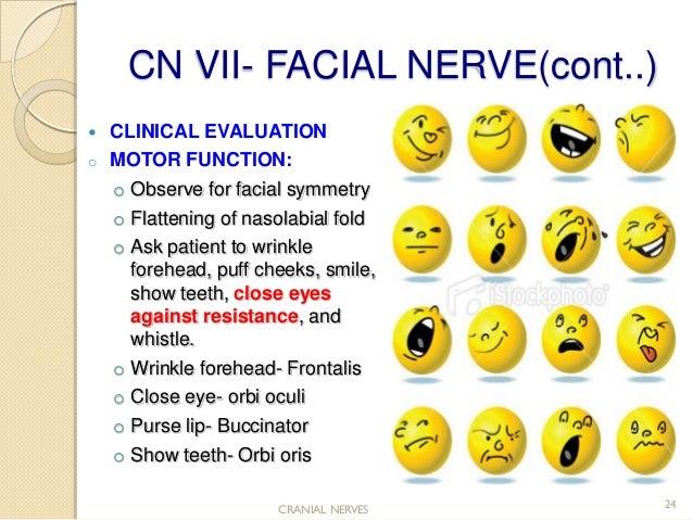 facial nerve testing