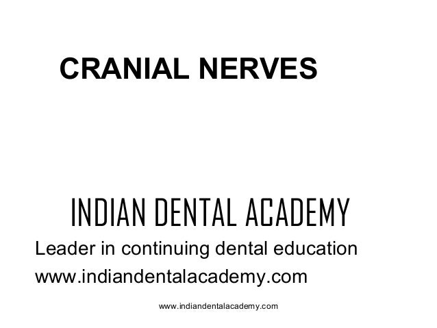 CRANIAL NERVES  INDIAN DENTAL ACADEMY Leader in continuing dental education www.indiandentalacademy.com www.indiandentalac...