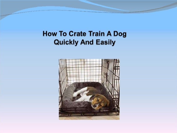 How to easily crate train your puppy