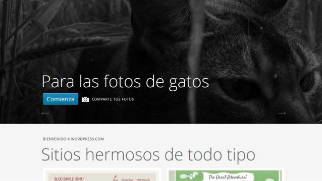 Crear wordpress en español