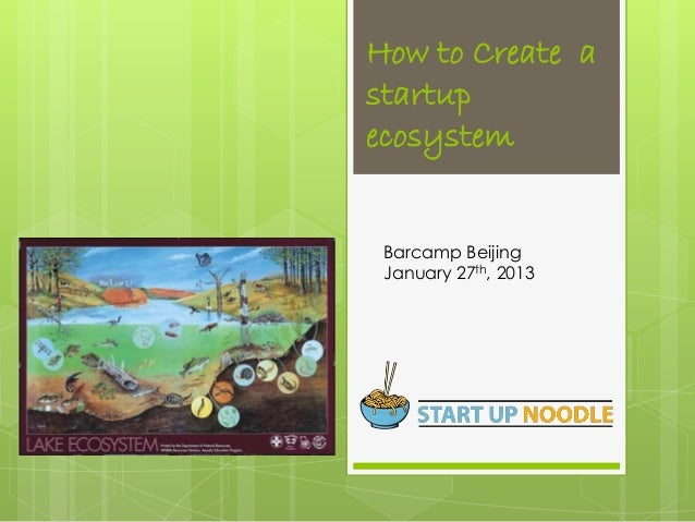 How to create the right startup ecosystem?