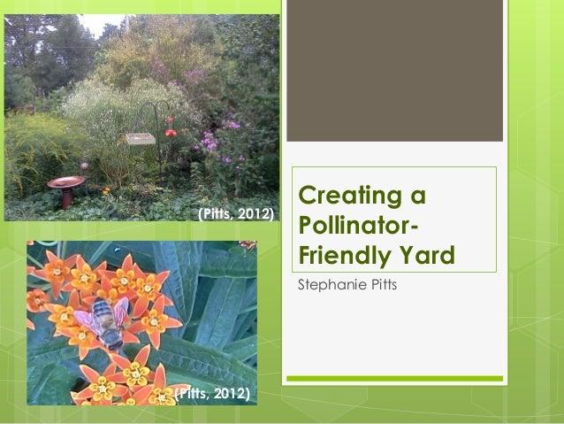 Creating a pollinator friendly yard