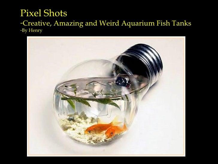 <ul><li>Pixel Shots  </li></ul><ul><li>Creative, Amazing and Weird Aquarium Fish Tanks </li></ul><ul><li>By Henry </li></ul>