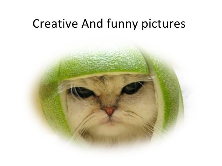 Creative and funny pictures