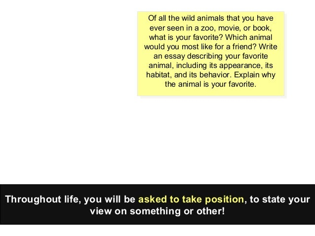 creative writing structure jpg cb  field trip to the zoo essays