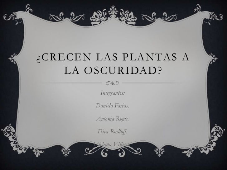 ¿CRECEN LAS PLANTAS A    LA OSCURIDAD?          Integrantes:        Daniela Farias.        Antonia Rojas.        Diva Rudl...