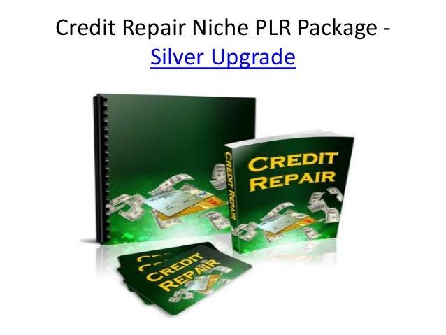 Credit Repair Niche PLR Package -         Silver Upgrade