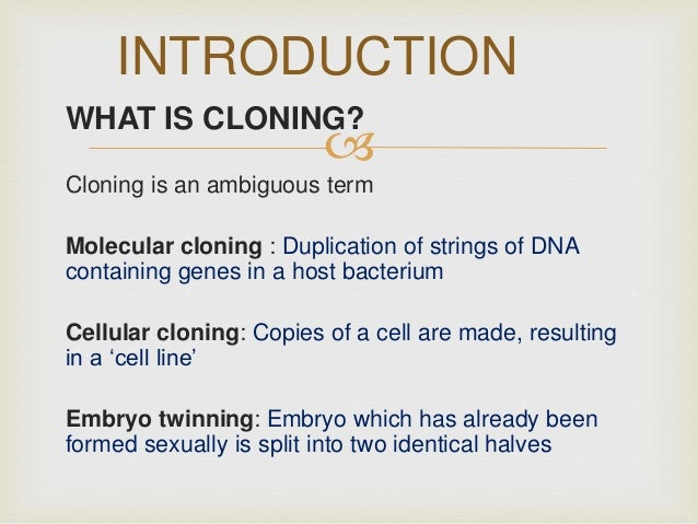 vics essay on cloning and its constrictions Essay on construction: free examples of essays, research and term papers though british constructing industry has always been authoritative, nevertheless, it is very important to mention the reasons that lead to the appearance of these reports.