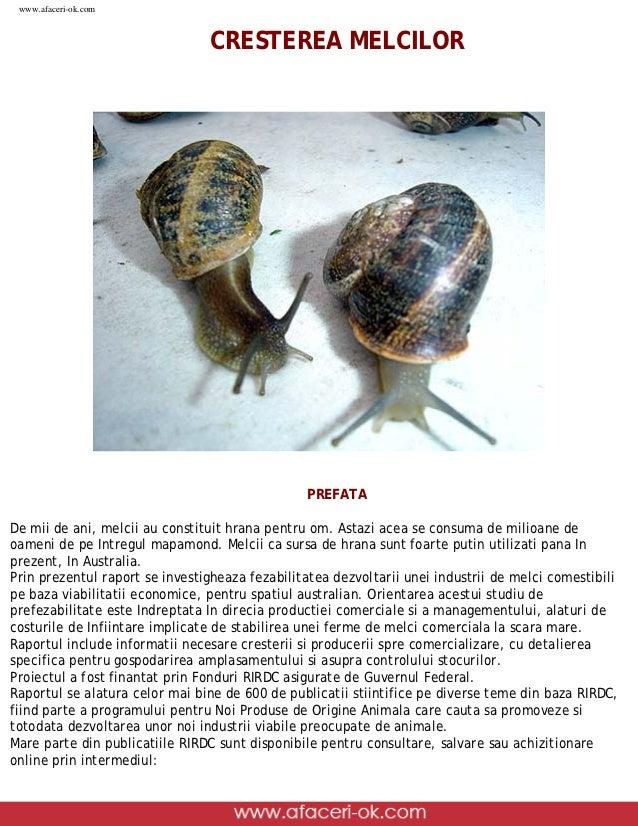 www.afaceri-ok.com                                                  CRESTEREA MELCILOR                                    ...