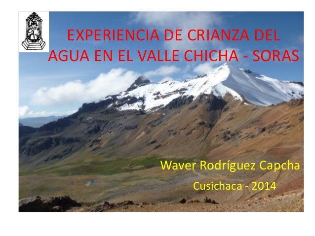 EXPERIENCIA DE CRIANZA DEL AGUA EN EL VALLE CHICHA - SORAS Waver Rodríguez Capcha Cusichaca - 2014