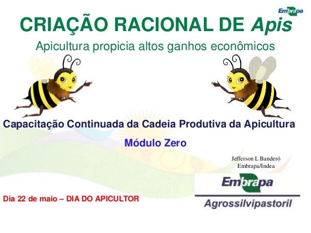 CRIAÇÃO RACIONAL DE Apis       Apicultura propicia altos ganhos econômicosCapacitação Continuada da Cadeia Produtiva da Ap...