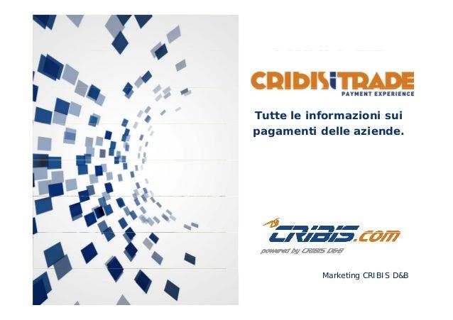 CRIBIS iTRADE: Tutte le informazioni sui pagamenti delle aziende