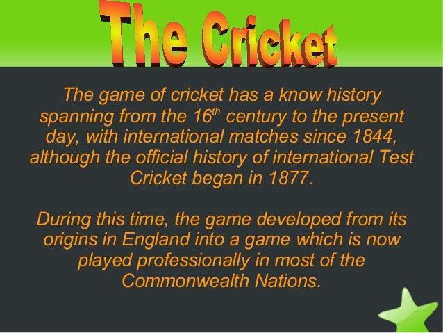 Cricket julia y junra