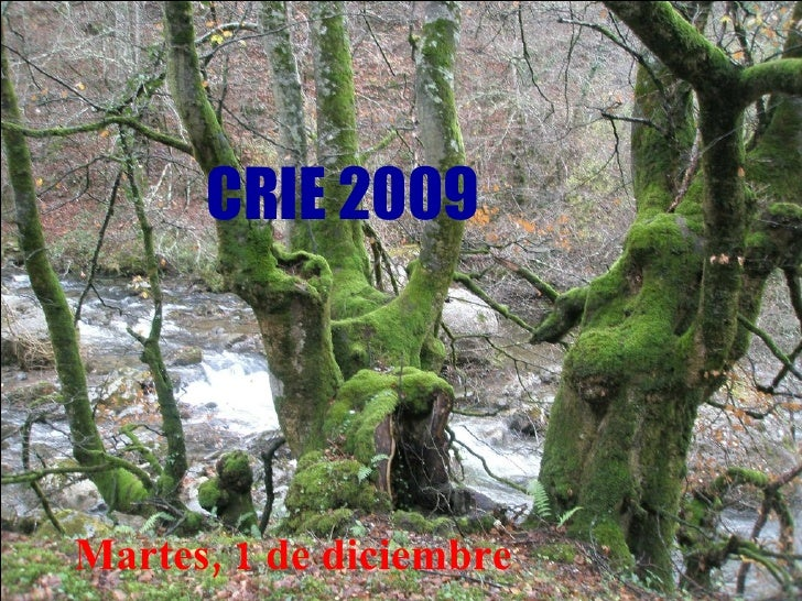 CRIE 2009 Martes, 1 de diciembre