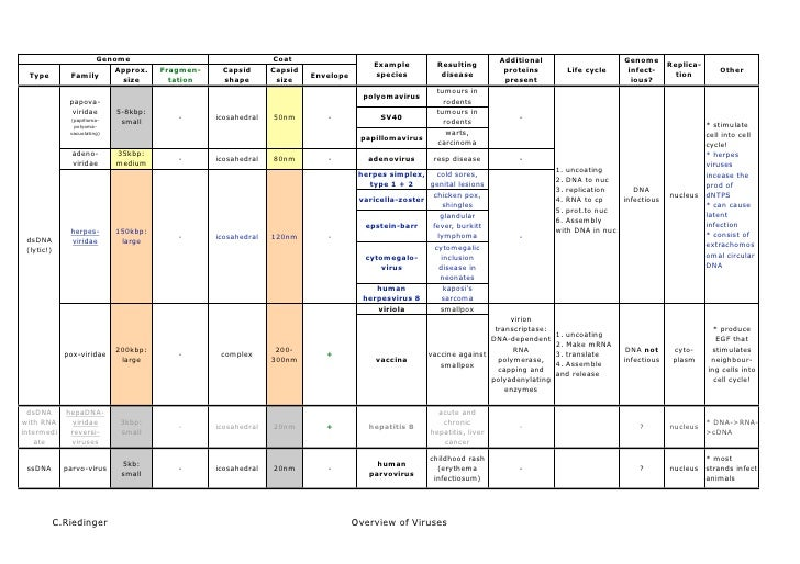 Overview of viruses and their properties