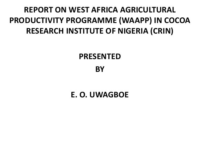 REPORT ON WEST AFRICA AGRICULTURAL PRODUCTIVITY PROGRAMME (WAAPP) IN COCOA RESEARCH INSTITUTE OF NIGERIA (CRIN) PRESENTED ...