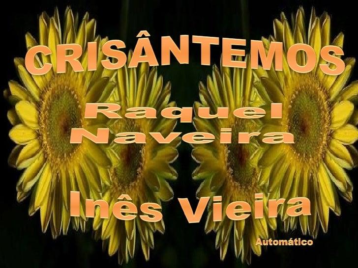 Os crisântemos são flores de um amarelo tão vivo,        Tão forte,  Que acendem a casaComo lâmpadas de ouro