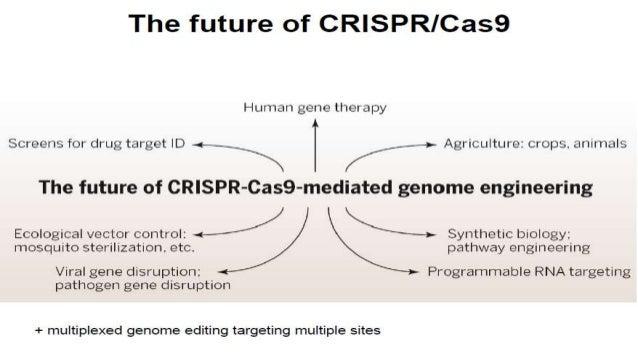 Crispr Cas A New Tool Of Genome Editing