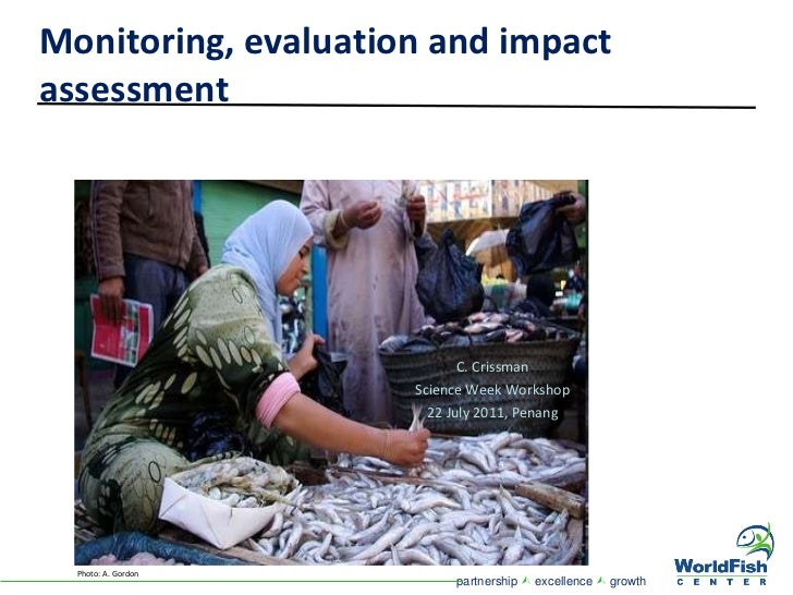 effects of evaluation and monitoring of Tools of evaluation review of records monitoring case  programme monitoring evaluation goals  side effects of the programme monitoring.