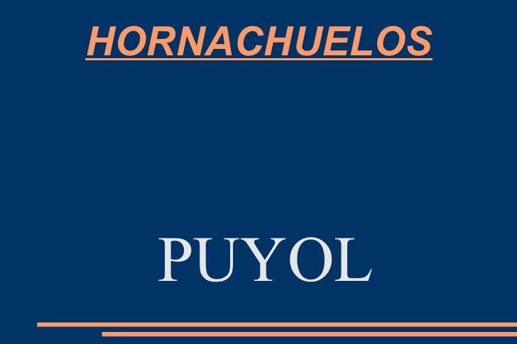 HORNACHUELOS  PUYOL