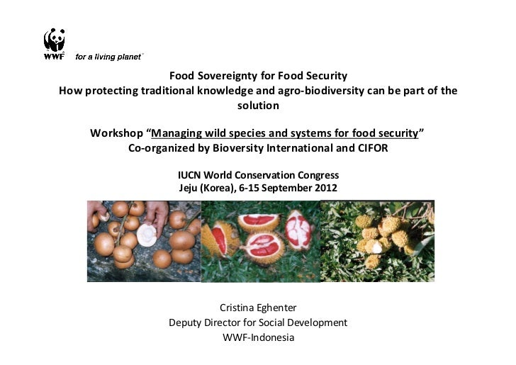 Food sovereignty for food security: how protecting traditional knowledge and agro-biodiversity can be part of the solution