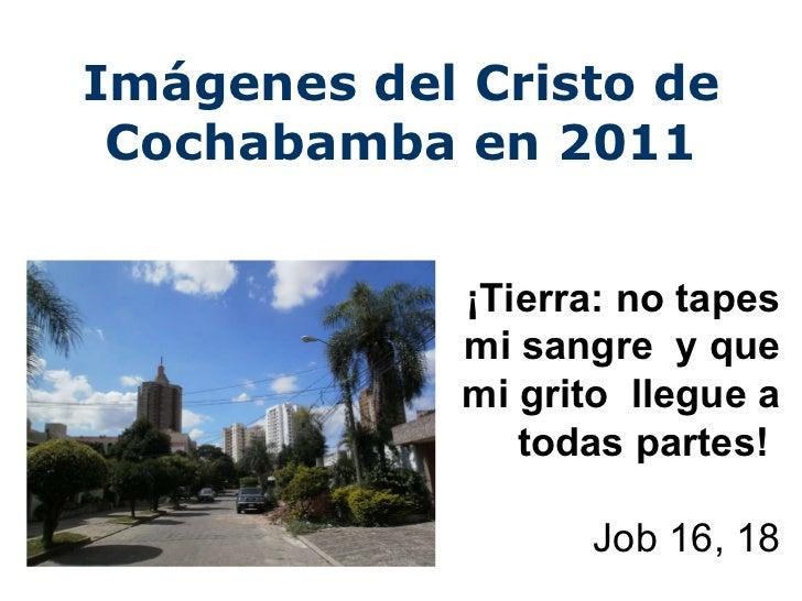 Imágenes del Cristo de Cochabamba en 2011 ¡Tierra: no tapes mi sangre  y que mi grito  llegue a todas partes!   Job 16, 18