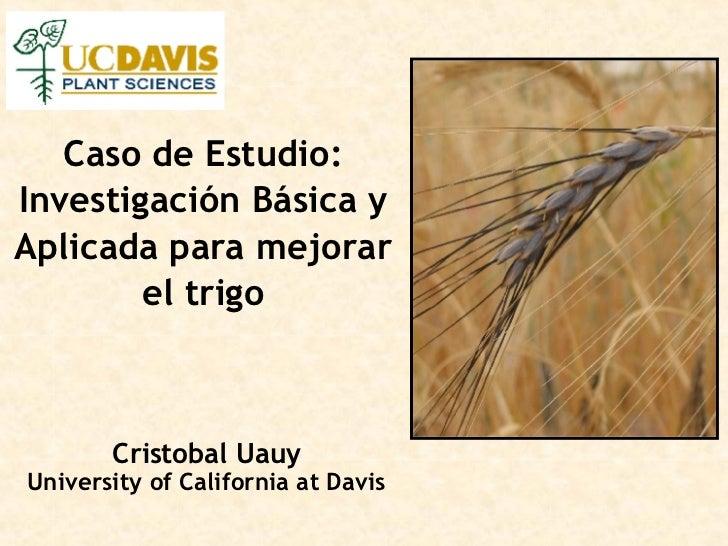 Caso de Estudio: Investigación Básica y Aplicada para mejorar el trigo Cristobal Uauy University of California at Davis