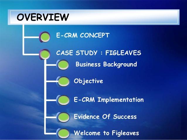 crm case study pdf